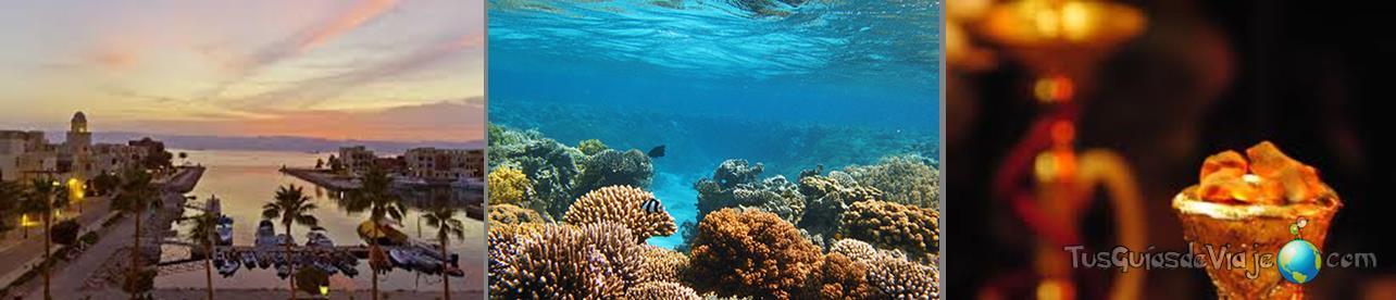 submarinismo en jordania en el mar rojo