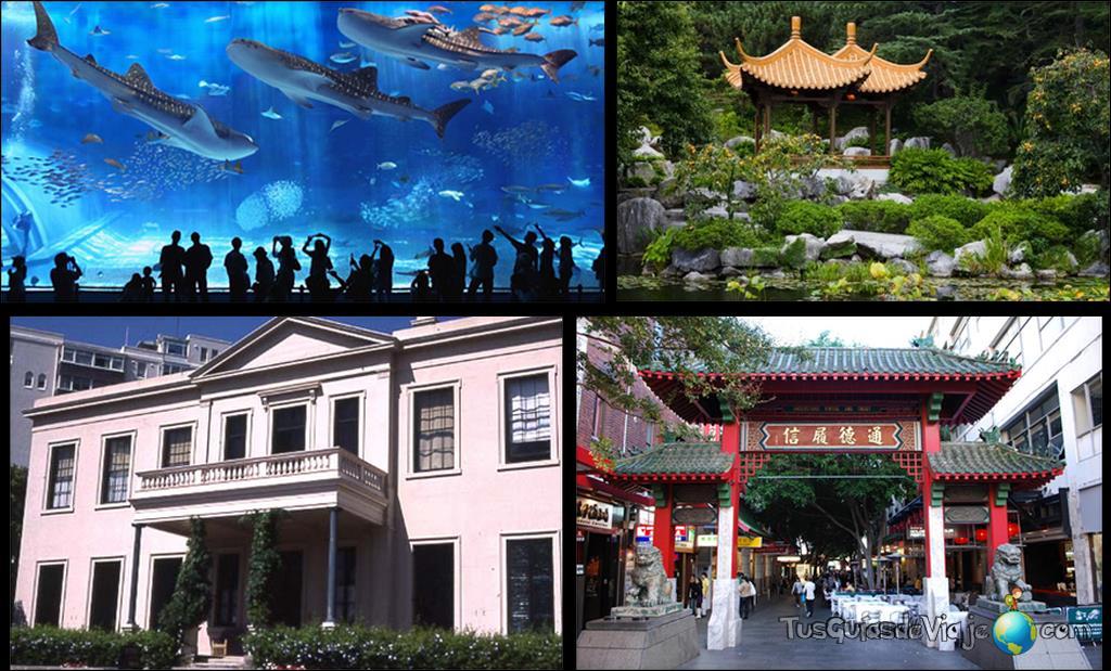 qué ver en sidney: acuario de Sidney - Jardín chino de la amistad - Casa Elizabeth Bay - Chinatown