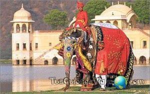 montar en elefante en jaipur