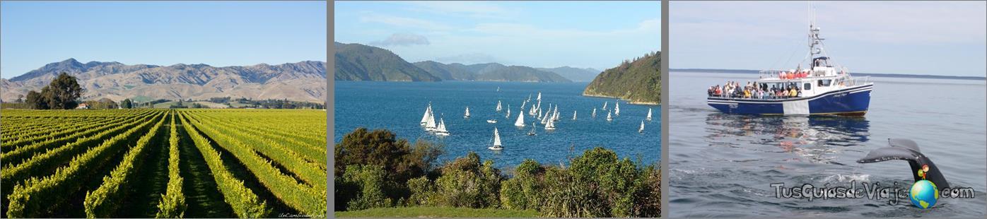 La región del vino en Nueva Zelanda y bonitos fiordos