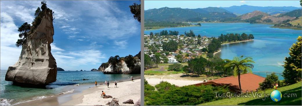 naturaleza en estado puro en la isla norte de nueva zelanda